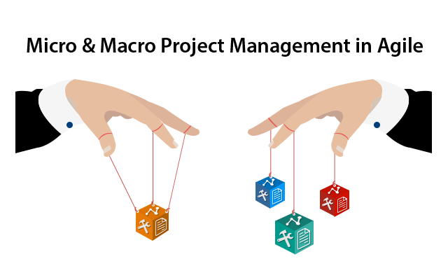 Micro macro project management in agile