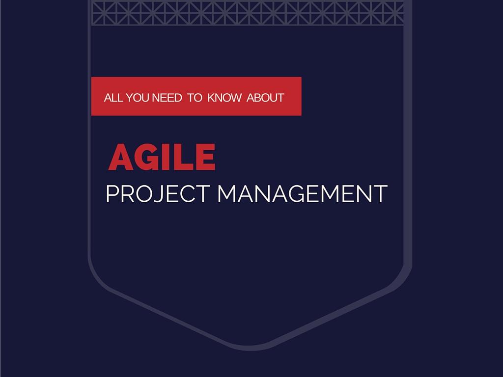 Metodología ágil de desarrollo de software (definición y principio de ágil)